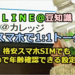 【LINE@で1:1トーク設定】格安スマホSIMでもLINE@で年齢確認できる設定方法!
